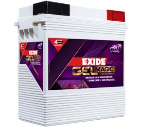 Features of Exide Flat Plate Inverter Batteries